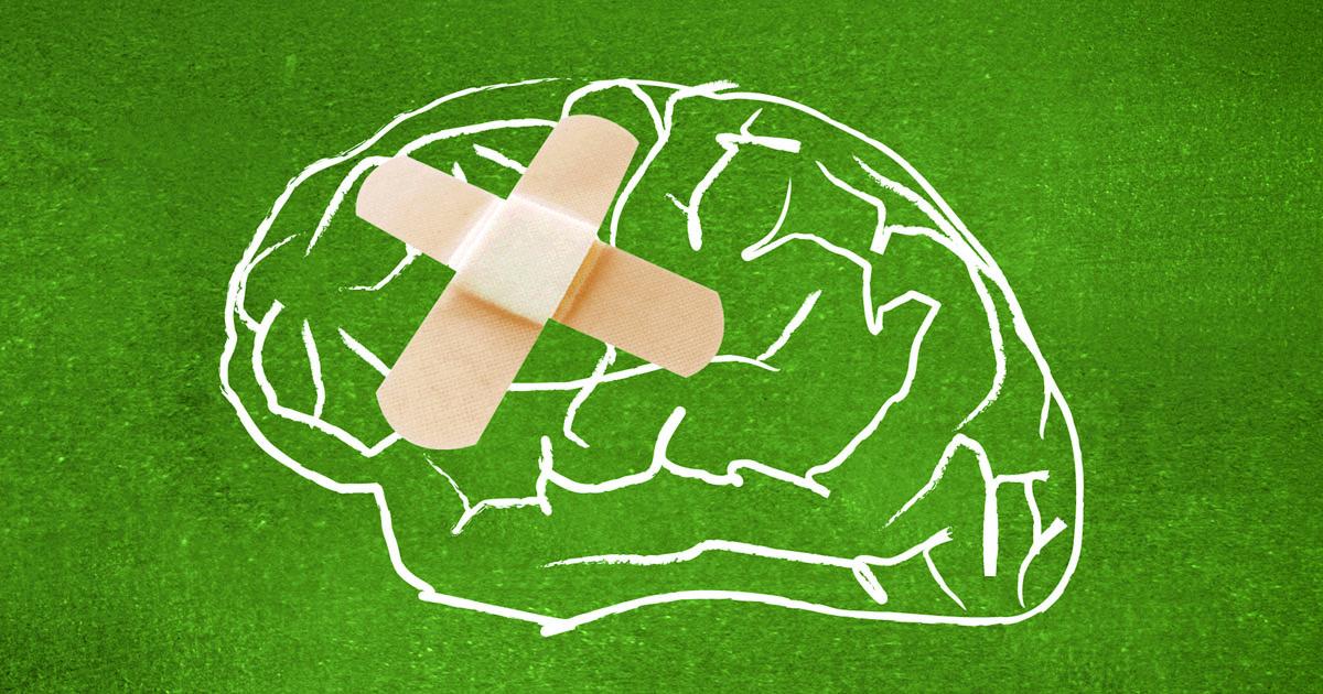 hjernens ulike deler